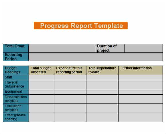 Daily Progress Report Templates