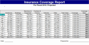 Insurance Report Template image23